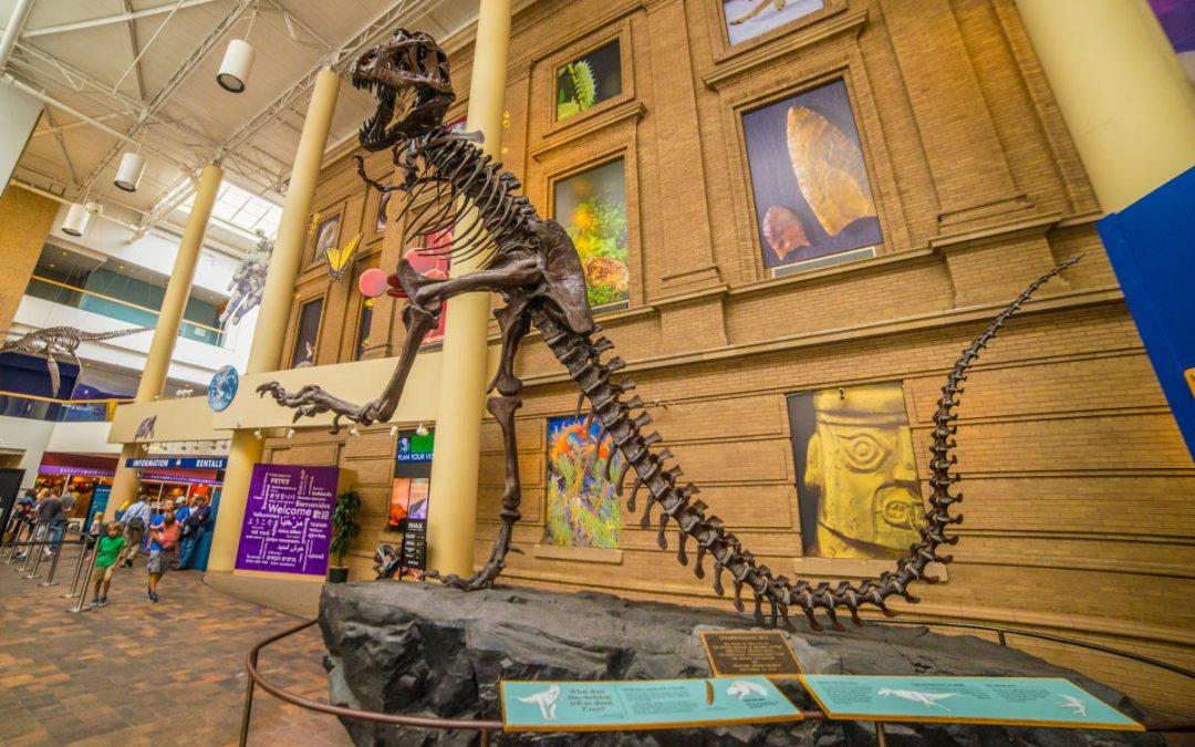 Dinosaurs in Denver
